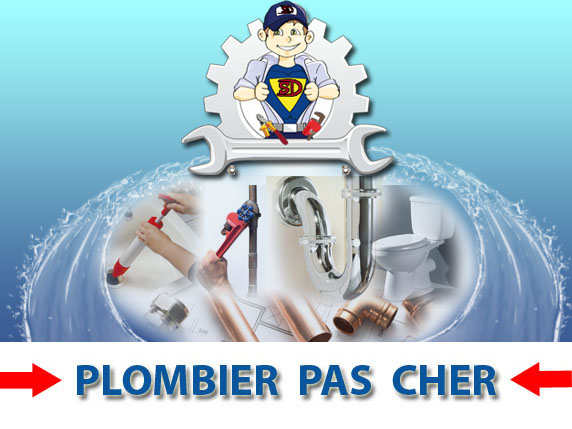 Assainissement Canalisation Paray Douaville 78660